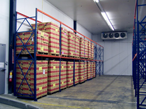 Large-scale food production storage coolers & freezers